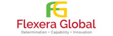 Flexera Global